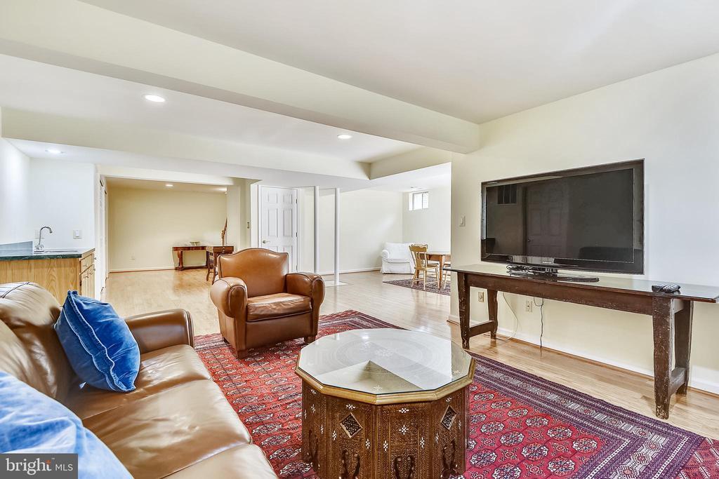 Lower level recreation room - 20405 EPWORTH CT, GAITHERSBURG