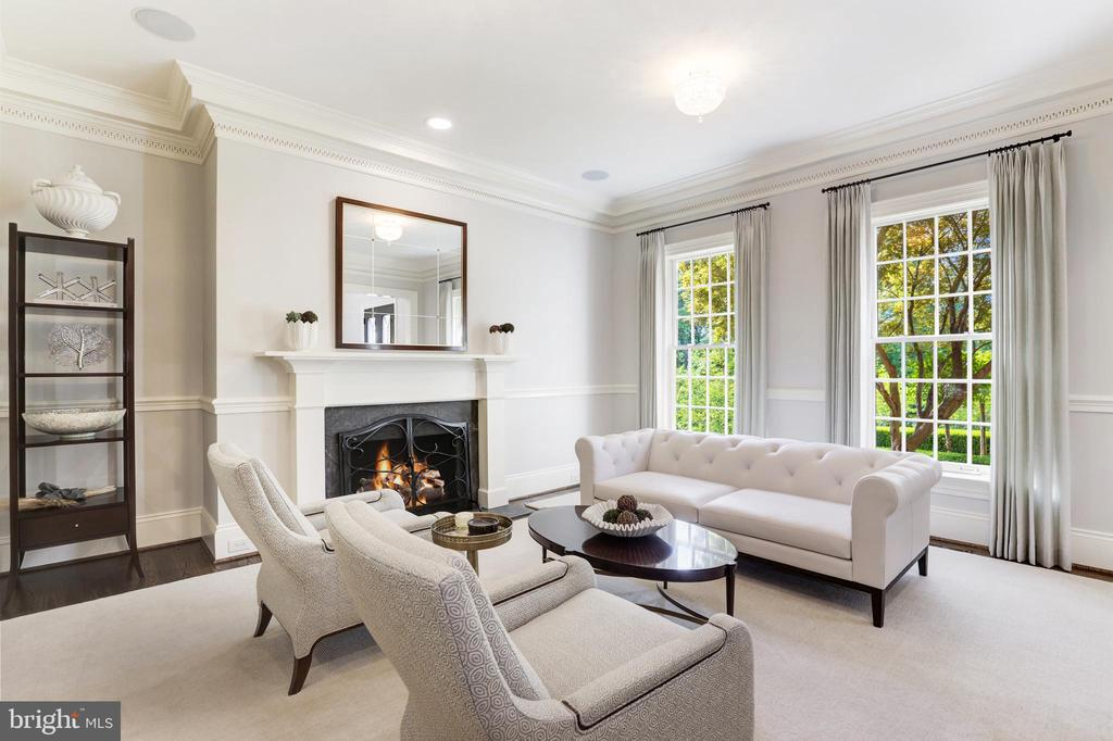 living room with fireplace - 18692 RIVERLOOK CT, LEESBURG