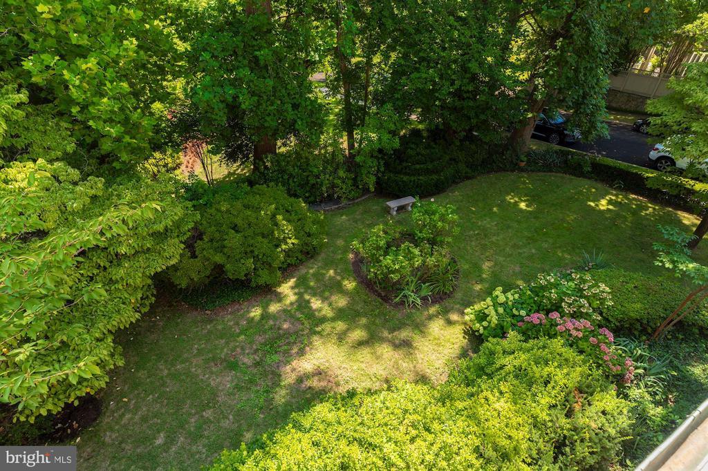 Back Garden - 3001 FOXHALL RD NW, WASHINGTON