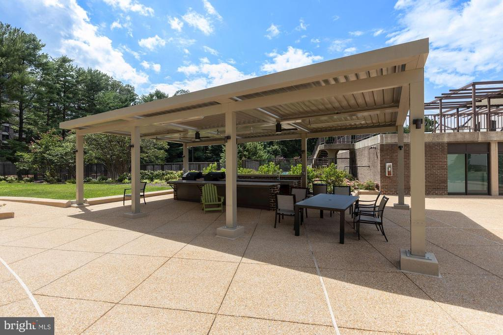 Enjoy a steak on the newly installed grills - 1800 OLD MEADOW RD #1106, MCLEAN