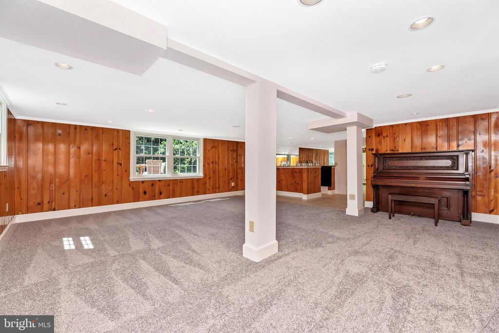 Loads of Light in Walk-Out Level Family Room - 25200 OAK DR, DAMASCUS