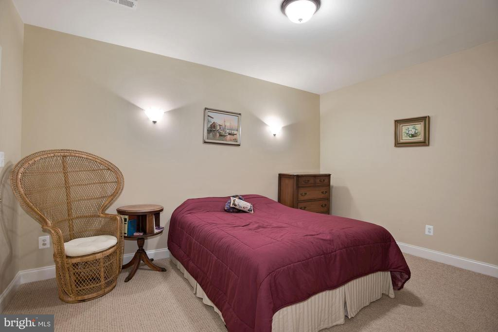 Lower level guest suite with large closet - 20157 VALHALLA SQ, ASHBURN