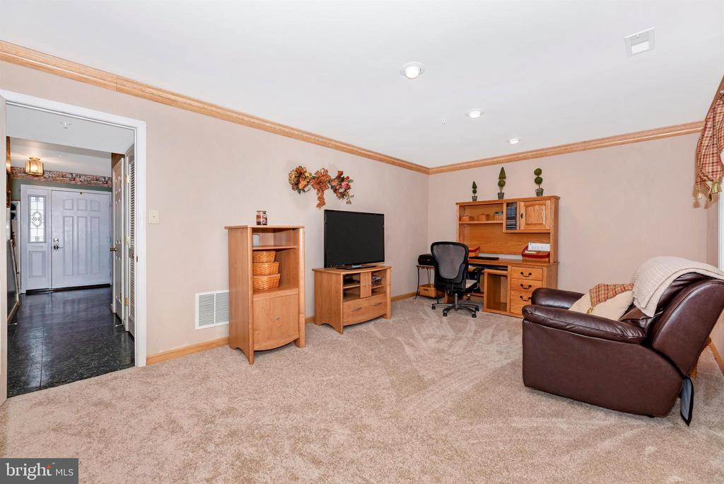 Lower Level Bonus/Rec Room - 2022 MALVERN WAY, FREDERICK