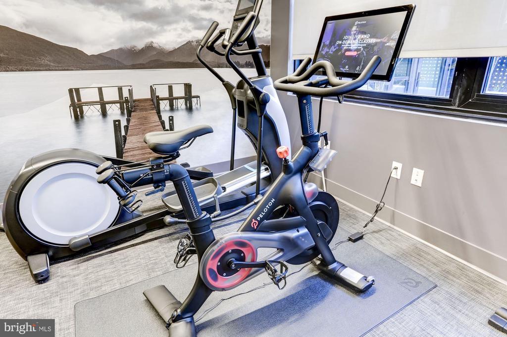 The Bower Fitness Studio - 1300 4TH ST SE #802, WASHINGTON