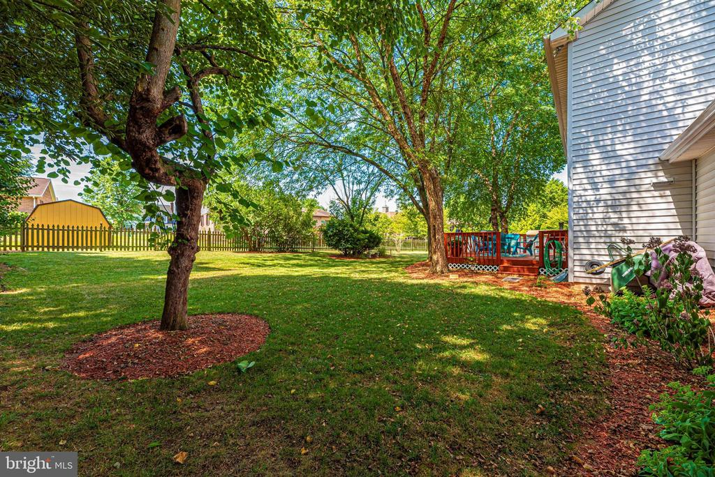 Beautiful mature landscaping - 18 GRAY FOX CT, MIDDLETOWN
