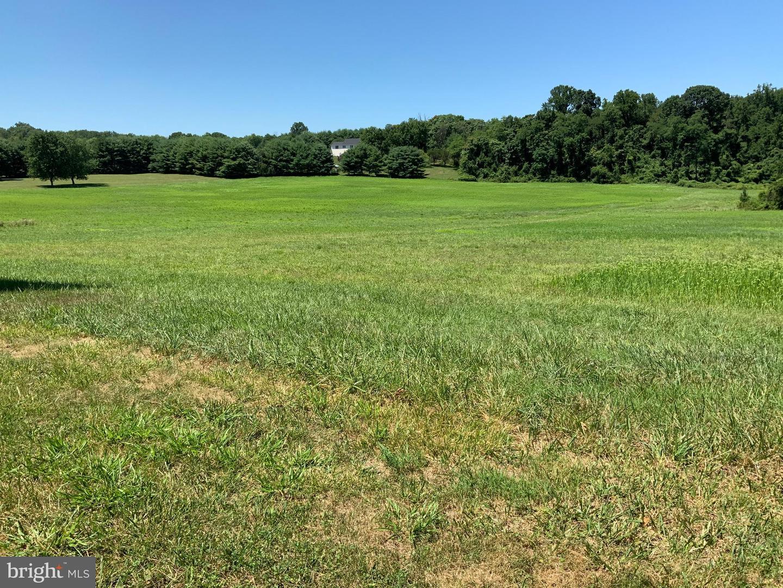 土地 為 出售 在 Kingsville, 馬里蘭州 21087 美國