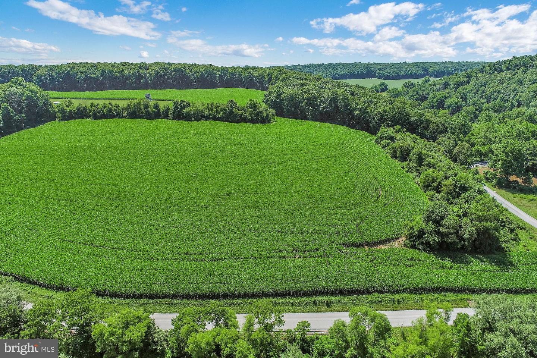 土地,用地 为 销售 在 Dallastown, 宾夕法尼亚州 17313 美国