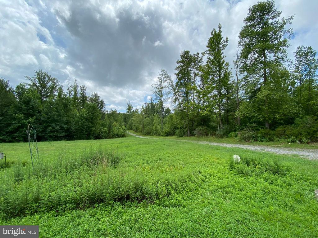 Private Driveway - 5334 DICKERSON RD, PARTLOW