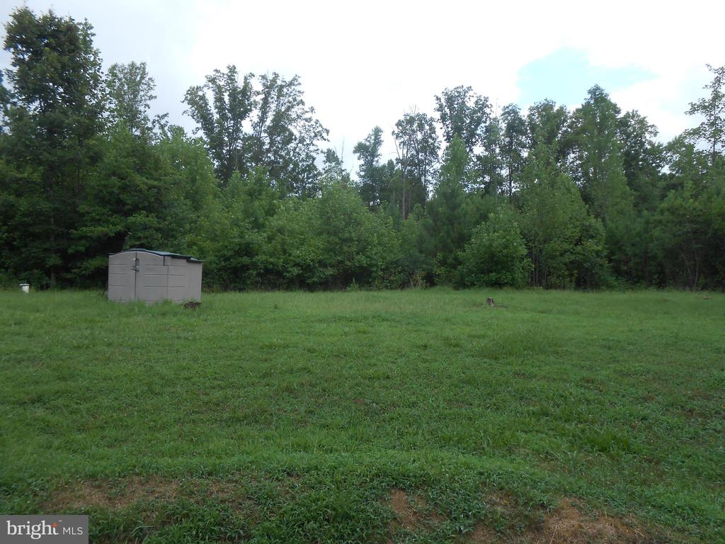 Rear Yard - Storage Shed - 5334 DICKERSON RD, PARTLOW