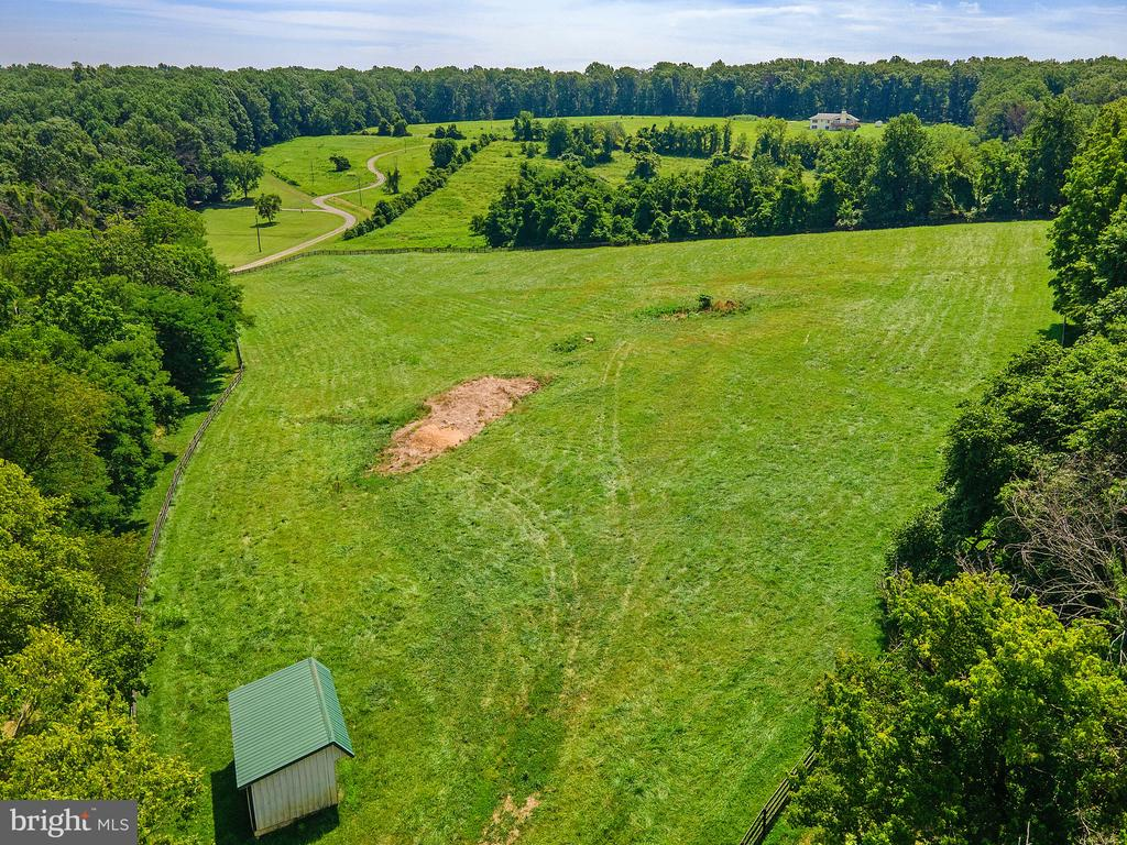 another pasture showing run in shed - 19200 ORCHARD MANOR LN, LEESBURG