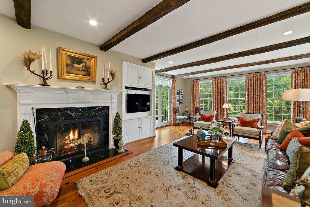 Family Room flows into country kitchen - 19200 ORCHARD MANOR LN, LEESBURG