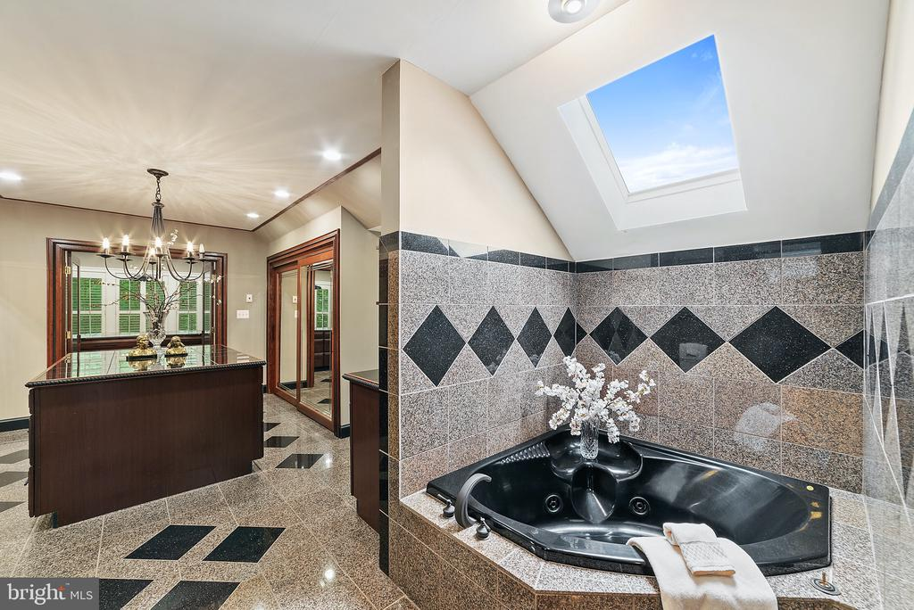 Master Bath Tub with skylight above - 19200 ORCHARD MANOR LN, LEESBURG