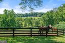 The most important part of the farm!! - 19200 ORCHARD MANOR LN, LEESBURG