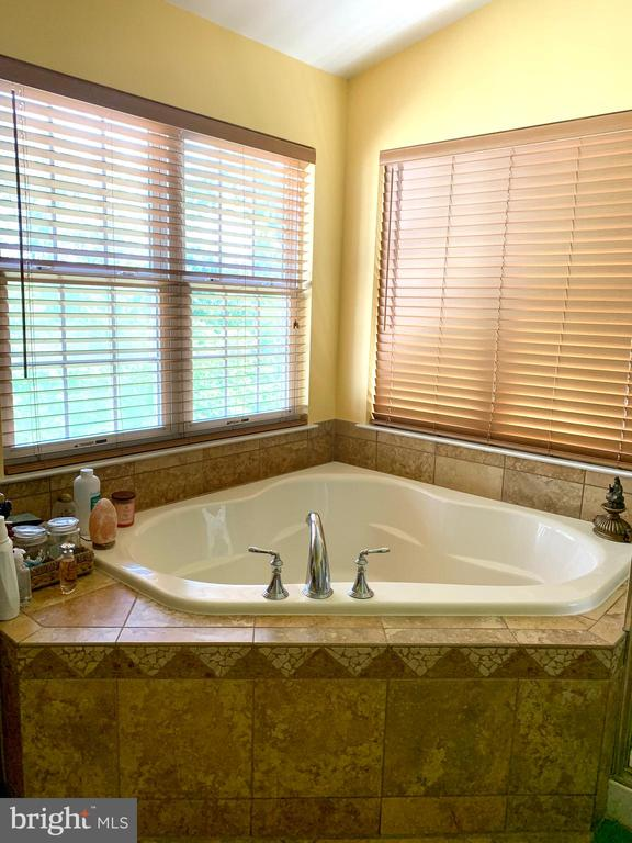 Master Bathroom- Soaking tub - 25575 AMERICA SQ, CHANTILLY