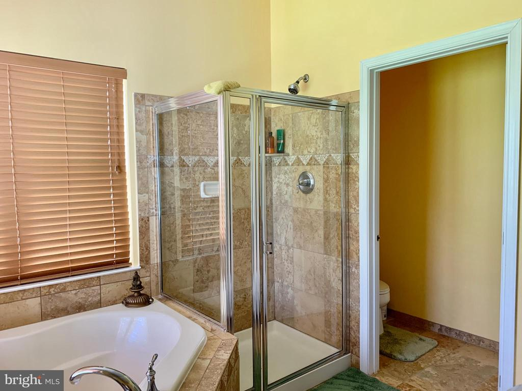 Master Bathroom- Standing shower - 25575 AMERICA SQ, CHANTILLY