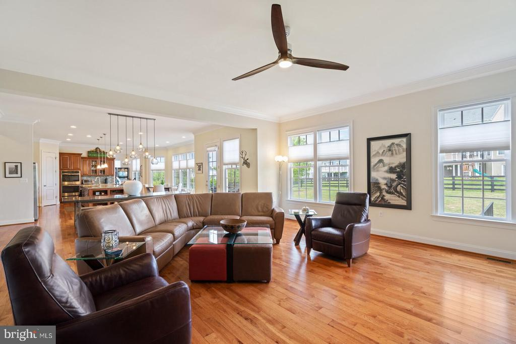 Large family room - 41932 CLOVER VALLEY CT, ASHBURN
