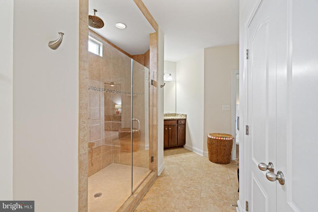 Owner's bath with dual shower heads - 41932 CLOVER VALLEY CT, ASHBURN