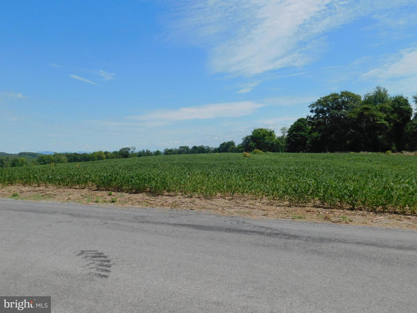 Land for Sale at Millerstown, Pennsylvania 17062 United States