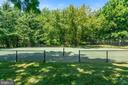 Tennis court - 19200 ORCHARD MANOR LN, LEESBURG