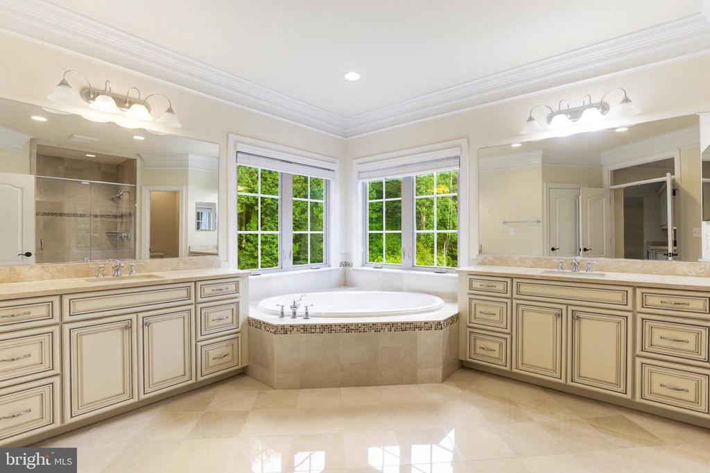 Owner's Suite Bath - 1351 BLAIRSTONE DR, VIENNA