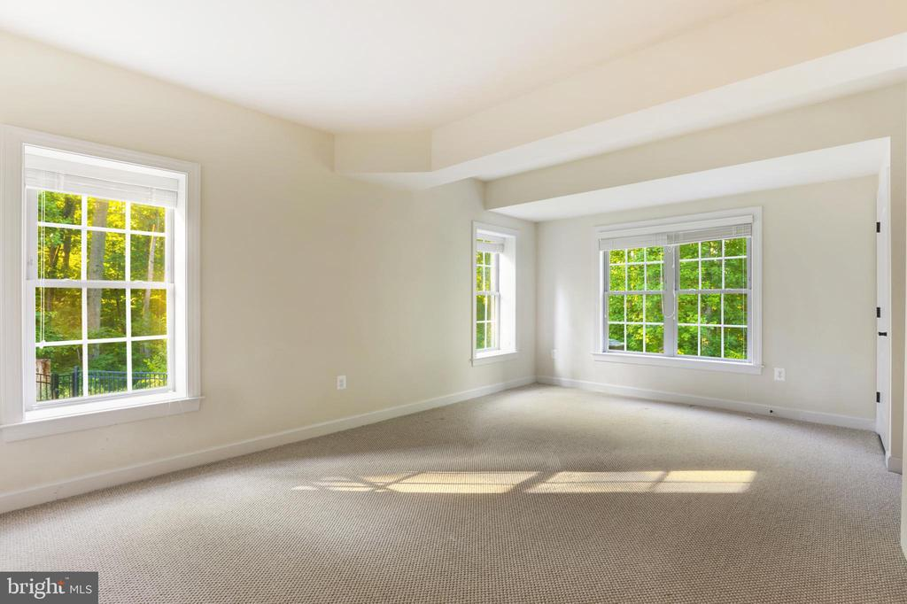 Bedroom  or Fitness Room (Lower Level) - 1351 BLAIRSTONE DR, VIENNA