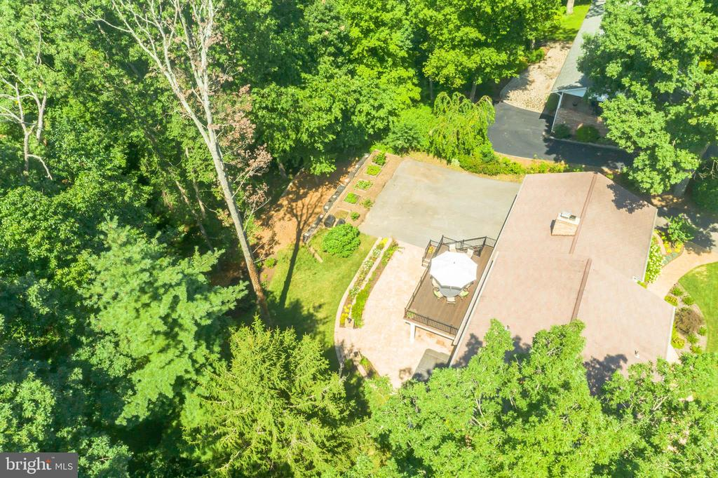 Tall tree being removed by owner - 10832 MIDDLEBORO DR, DAMASCUS