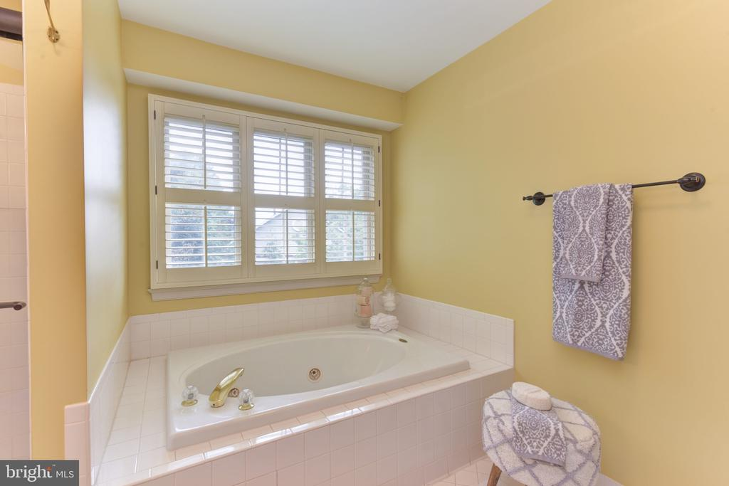 Separate tub and shower - 1000 DARTMOUTH RD, ALEXANDRIA