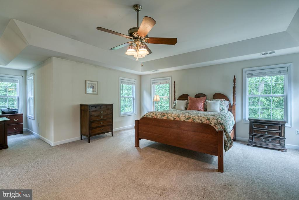 Master Retreat with Tons of Natural LIght - 5 ABRAHAM CT, STAFFORD