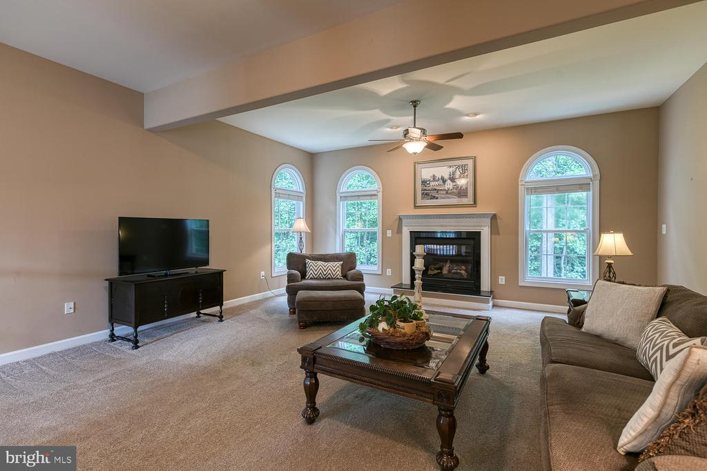 Family Room with Cozy Fireplace - 5 ABRAHAM CT, STAFFORD