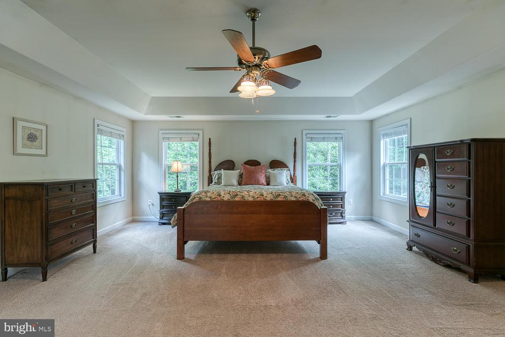 Large Master Bedroom with Tray Ceiling - 5 ABRAHAM CT, STAFFORD