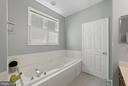 Master Bath with soaking tub - Plantation Shutters - 26235 OCALA CIR, CHANTILLY