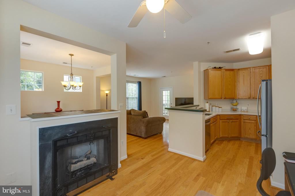 Gas fireplace and hardwood floors! - 6495 TAYACK PL #201, ALEXANDRIA