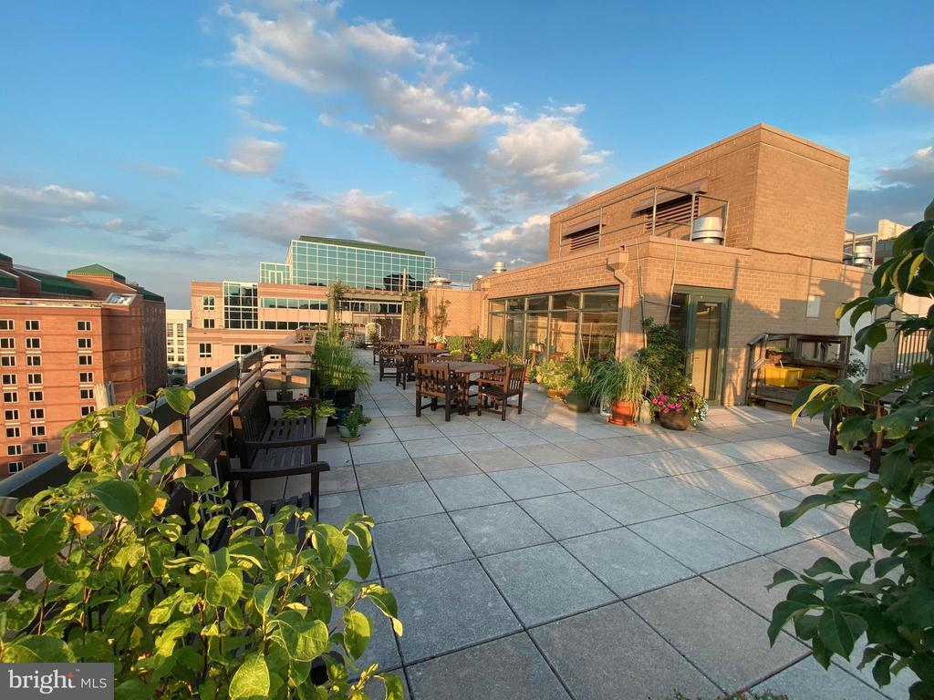 Roof top al fresco - 3625 10TH ST N #408, ARLINGTON