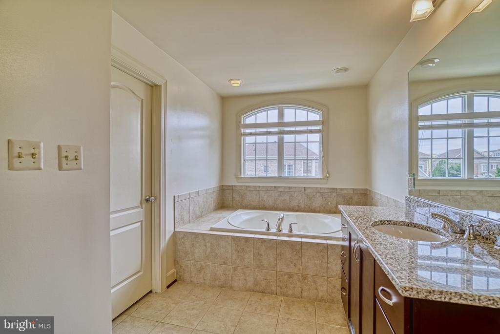 Lovely Soaking Tub - 42439 MERIDIAN HILL DR, BRAMBLETON