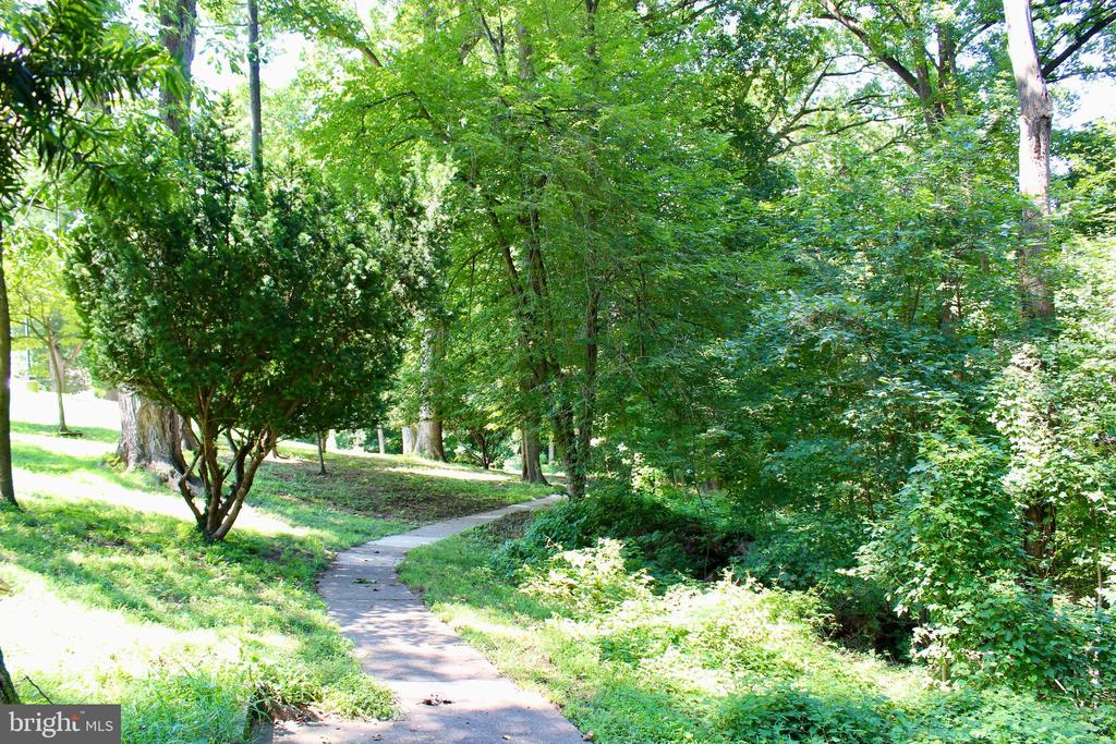 Lush walking trails on the property - 9610 DEWITT DR #PH412, SILVER SPRING