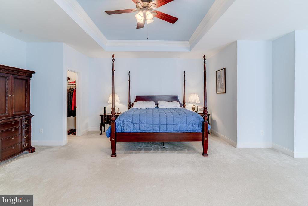 Tray ceiling and ceiling fan too - 43600 CANAL FORD TER, LEESBURG