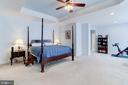 Master Suite w/sitting area & walk-in closet - 43600 CANAL FORD TER, LEESBURG