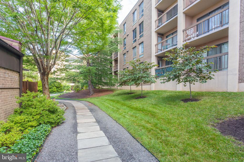 Paths throughout common area - 805 N HOWARD ST #336, ALEXANDRIA