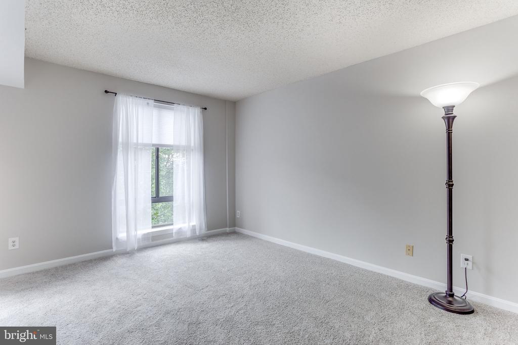 Large bedroom - 805 N HOWARD ST #336, ALEXANDRIA