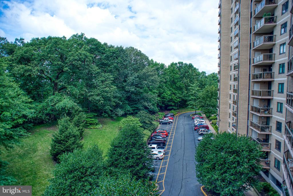 View from Unit 4-609 in Summer - 203 YOAKUM PKWY #317, ALEXANDRIA
