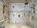 Luxurious walk-in shower - 40483 GRENATA PRESERVE PL, LEESBURG