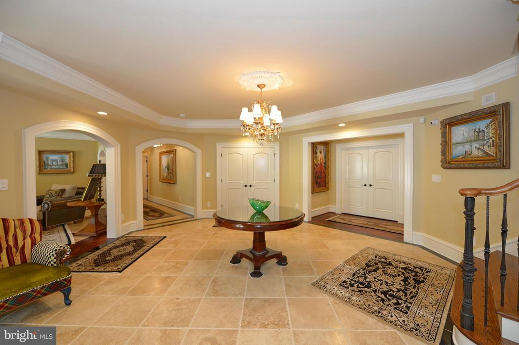 Lower level receiving room - 40483 GRENATA PRESERVE PL, LEESBURG