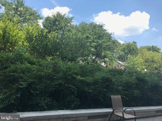 Enjoy some nature... - 1900 LYTTONSVILLE RD #306, SILVER SPRING