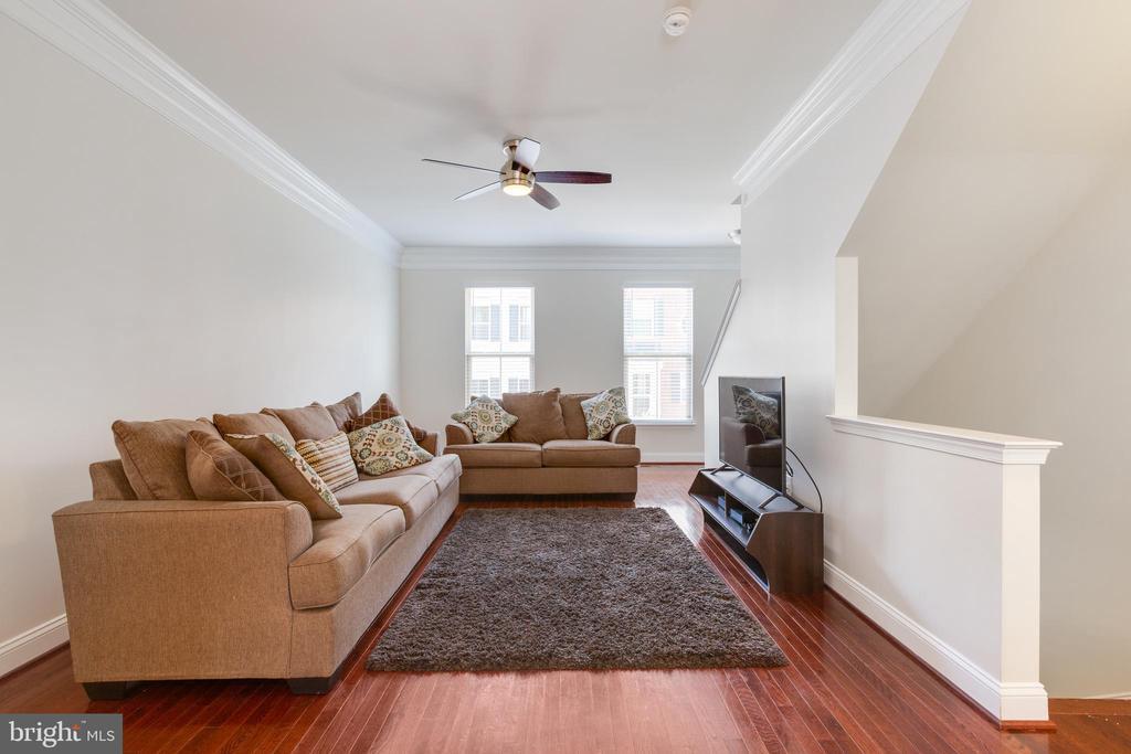 Main Level Family Room #3 - 4512 POTOMAC HIGHLANDS CIR, TRIANGLE
