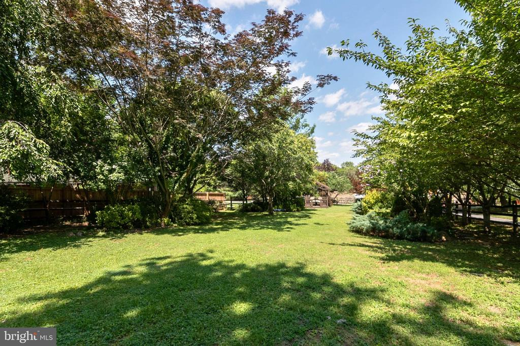 Huge Yard for Events - 51 W MAIN ST, NEW MARKET