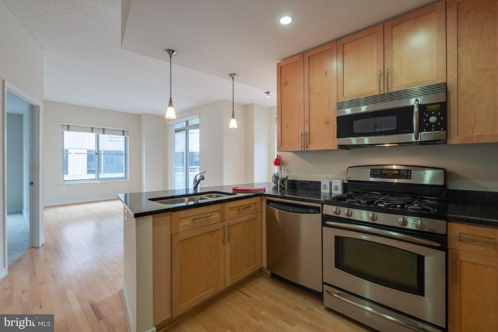 Open Kitchen w/ stainless appliance - 820 N POLLARD ST #603, ARLINGTON