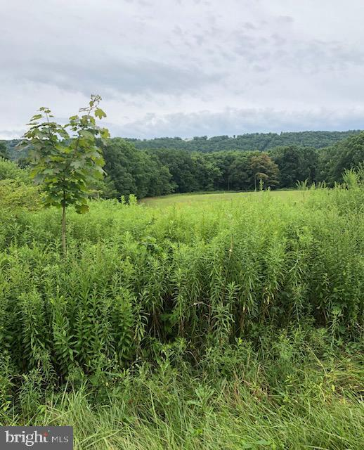 Land for Sale at Sugarloaf, Pennsylvania 18249 United States