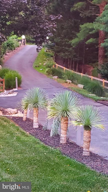 long private driveway welcomes wildlife + friends - 13814 ALDERTON RD, SILVER SPRING
