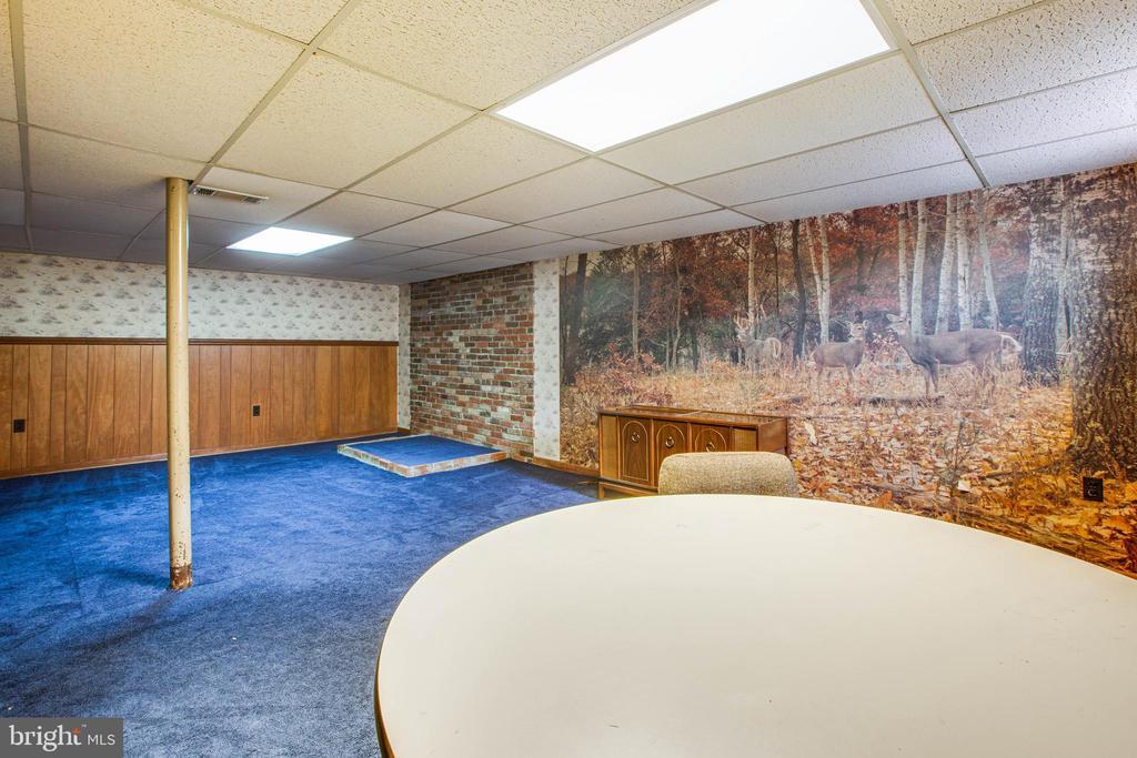 Rec Room mural - 6920 RUSKIN ST, SPRINGFIELD