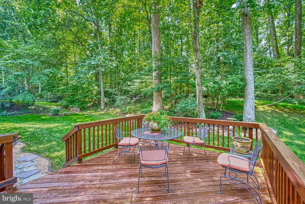 Lots of privacy - 8415 FROST WAY, ANNANDALE